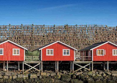 11 Norway