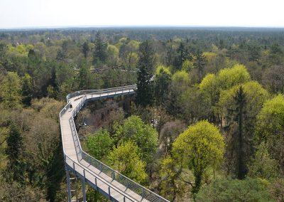 407_-Waldwipfelweg